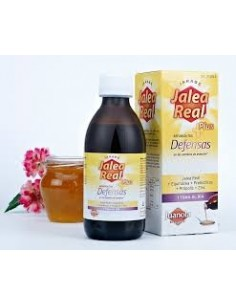 Angelini jarabe jalea real plus-defensas  250 ml